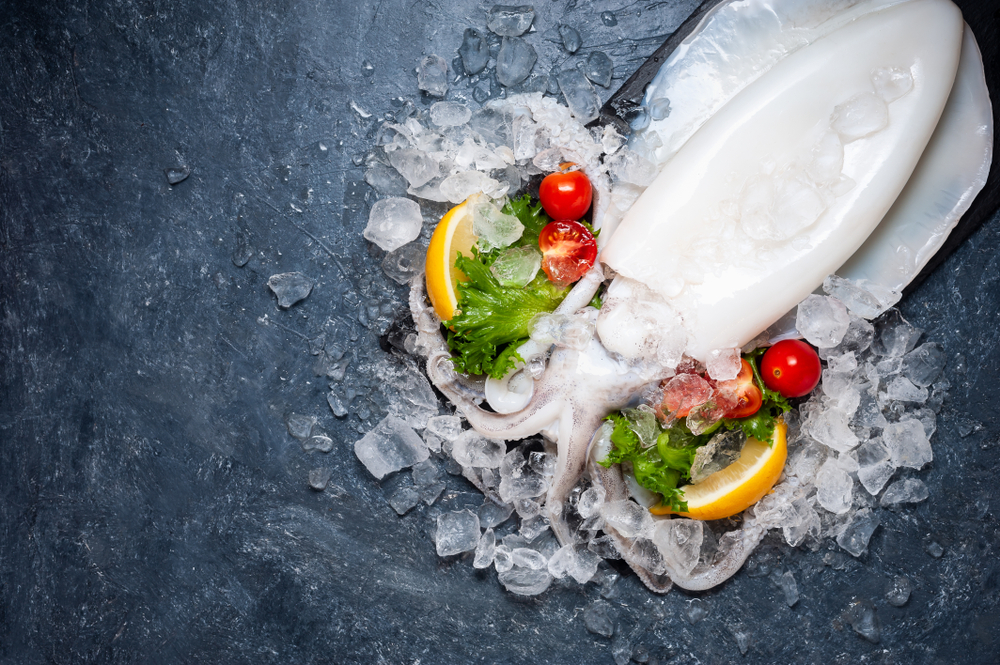 Cuttlefish with ice on plate.